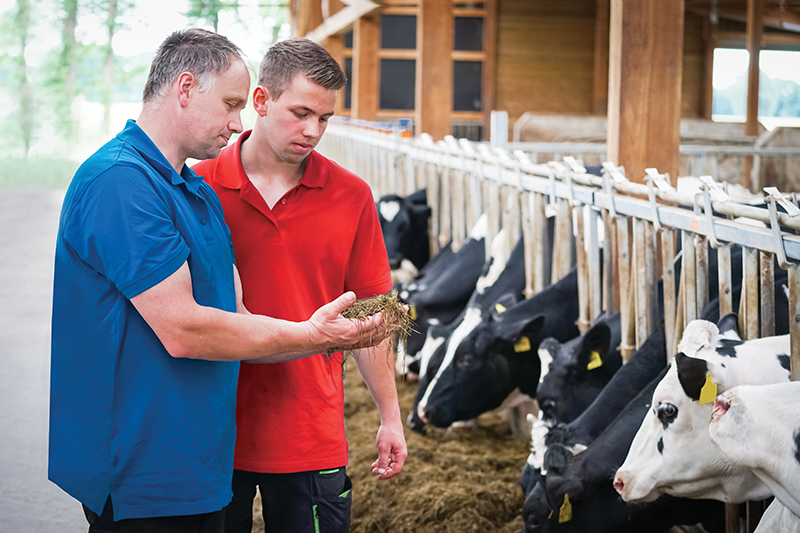 Agriculteurs - Implication et goût du travail bien fait