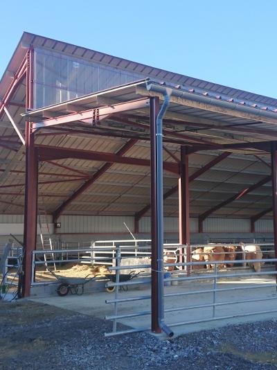 Bâtiment bovins extérieur